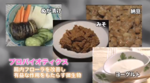 乳酸菌サプリ以外にて乳酸菌を摂取できる食材