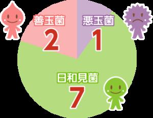 乳酸菌サプリがかかわる腸内フローラの菌の比率